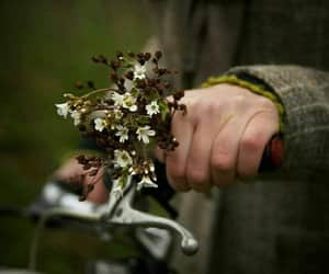flower, photos, and ﺍﻗﺘﺒﺎﺳﺎﺕ image