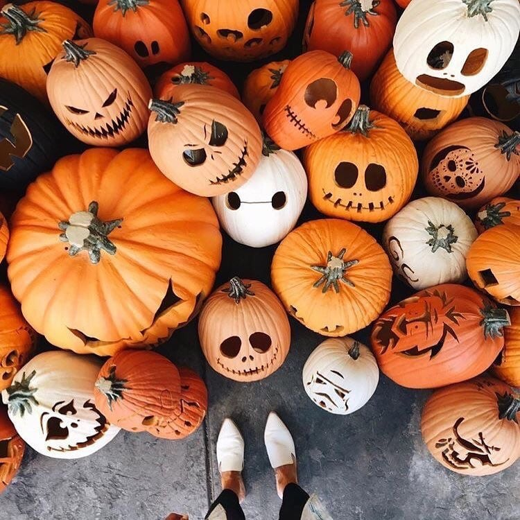 article, autumnal, and Halloween image
