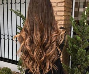 hair, hair color, hairstyle