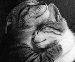 Cuteness 💕