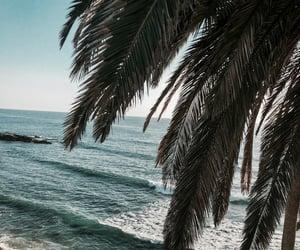 Ocean Blue🌊🌴