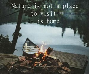 fire, forest, and home image