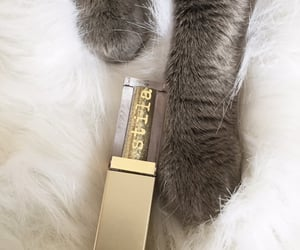 cat, paws, and sephora image