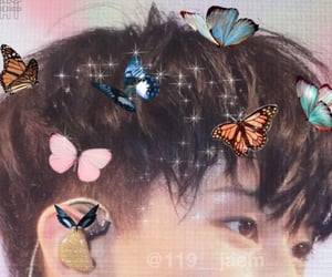 butterflies, edit, and mark image