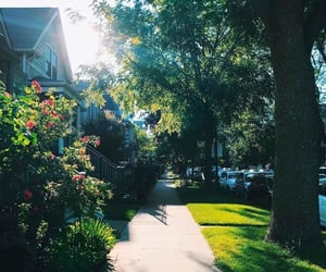 Houses, neighbourhood, and sidewalk image
