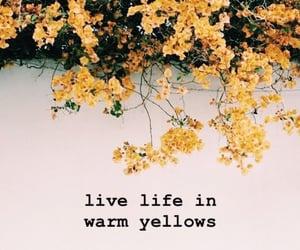 warm yellow sun