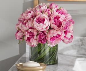 flowers, peony, and rose image