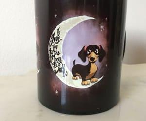 animal, celestial, and dachshund image