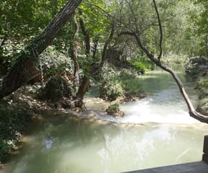 green, river, and yeşil image