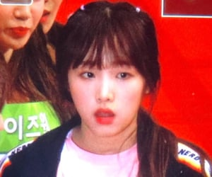 lq, izone, and yena image
