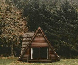 architecture, design, and woods image