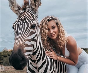 aesthetic, animals, and beauty image