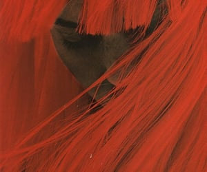 hair, red, and art image