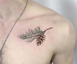 art, pine, and tattoo image