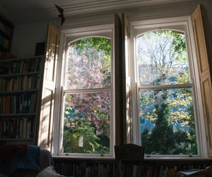window, flowers, and nature image