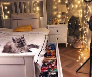 dream room, room, and tumblr room image