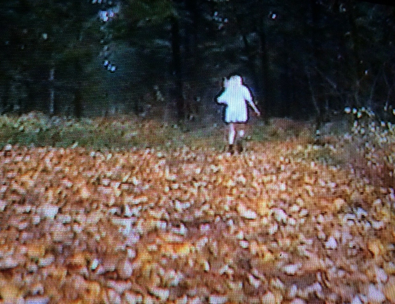 80s, 90s, and autumn image