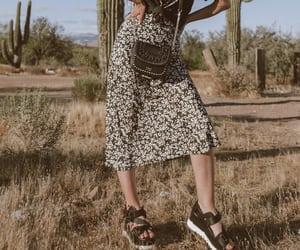 ArizonaGirl.com: Lost in the Desert