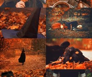 autumn witchcraft | Tumblr