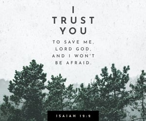 god, bible verse, and isaiah 12:2 image