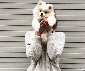 dog, girl, and puppy image