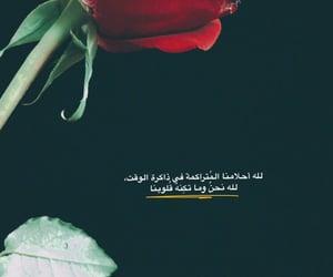 مسلسلات تركيه, تصويري سناب شات, and ستوريات ورد بنات image