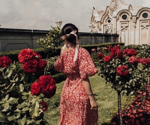 blooming, dress, and fashion image