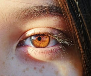 beutiful, eye, and brown image