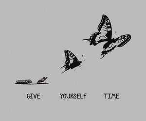 butterfly, happy, and positive image