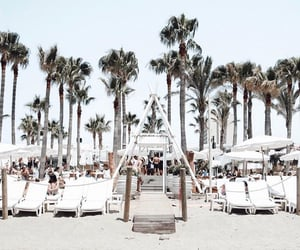 chic, luxury, and palm trees image