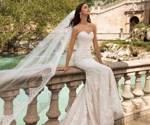belleza, wedding, and boda image