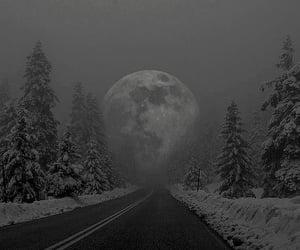 moon, winter, and night image
