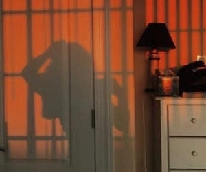 aesthetic, orange, and shadow image