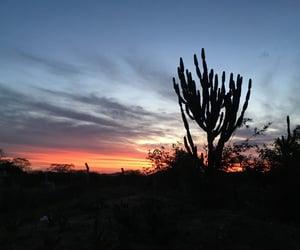 Sunset sertão