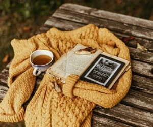 autumn, sweater, and book image