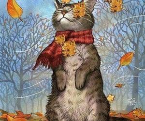 cat and autumn image