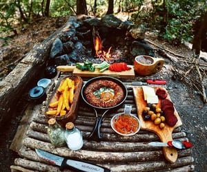 food, forest, and fun image