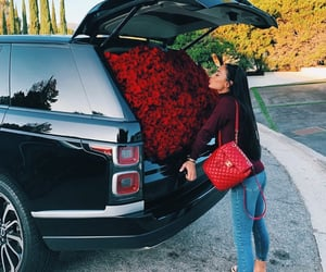 fashion, car, and flowers image