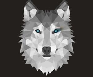 alpha, teen wolf, and stiles stilinski image