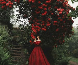 flowers, red, and dress image