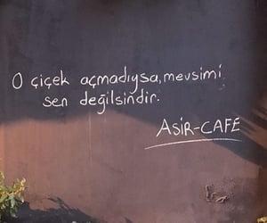 alıntı, türkçe sözler, and balat cafe image