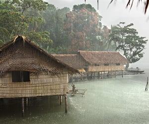nature, rain, and tropical image