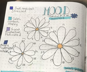 flowers, journal, and plan image