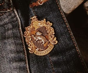 harry potter, hufflepuff, and pin image