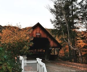fall and photography image