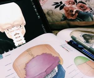 anatomy, art, and beauty image