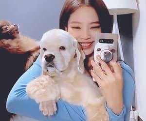 dog, gif, and jennie image