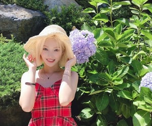 asian, plants, and g idle image
