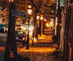 alley, fall, and trees image