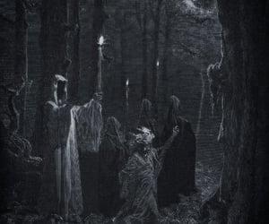 forest, dark, and Darkness image